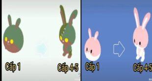 PLAY TOGETHER l Tổng Hợp Video TikTok Hài Hước - Cấp 1 - 5 Tất Cả Thú Cưng Thỏ Siêu Cute [CBNN]